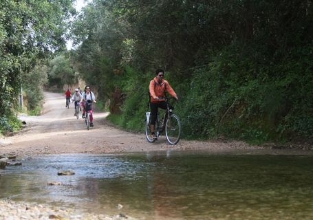 DISCOVER THE RIA FORMOSA  by the ECOVIA with Abilio Bikes